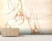 Study of a lower leg and foot (red chalk on paper) (recto) mural wallpaper living room preview
