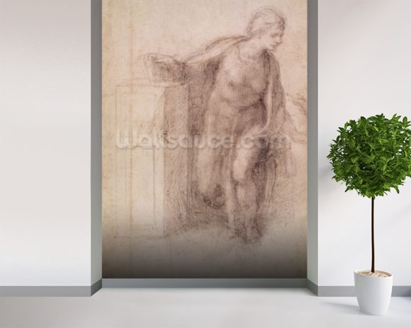 The Virgin Annunciate, c.1546 (black chalk on paper) wallpaper mural room setting