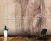 The Virgin Annunciate, c.1546 (black chalk on paper) wallpaper mural kitchen preview