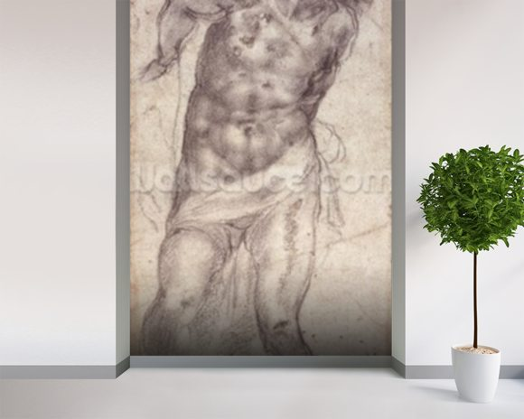 Figure Study (pencil on paper) mural wallpaper room setting