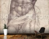 Figure Study (pencil on paper) mural wallpaper kitchen preview