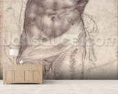 Figure Study (pencil on paper) mural wallpaper living room preview