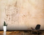 Torso Study (red & black chalk on paper) wallpaper mural kitchen preview