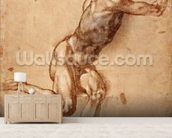 A seated male nude twisting around, c.1505 (pen & ink with wash on paper) wallpaper mural living room preview