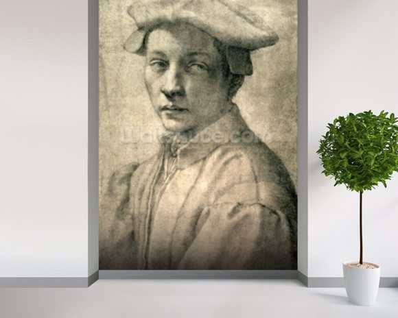 Portrait of Andrea Quaratesi, c.1532 (black chalk on paper) wallpaper mural room setting