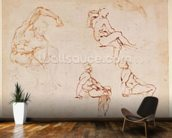 Figure Studies for a Man (brown ink) mural wallpaper kitchen preview