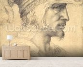 Ideal head of a warrior (black chalk on paper) mural wallpaper living room preview