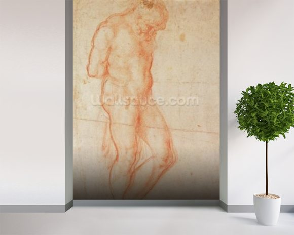 Study of a Nude (red chalk on paper) wall mural room setting