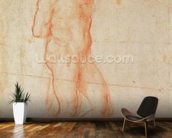 Study of a Nude (red chalk on paper) wall mural kitchen preview