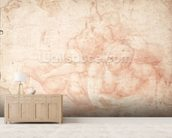 Study of a Male and Female Nude (red chalk on paper) mural wallpaper living room preview