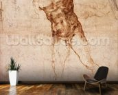 Sketch of a Nude Man (W. 4 recto) (pen & ink on paper) wall mural kitchen preview