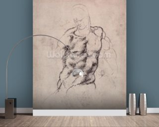 Figure Study (charcoal on paper) mural wallpaper