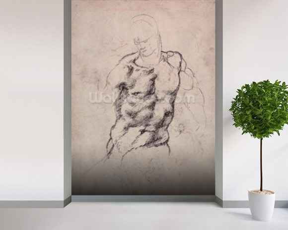 Figure Study (charcoal on paper) mural wallpaper room setting