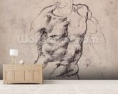 Figure Study (charcoal on paper) mural wallpaper living room preview