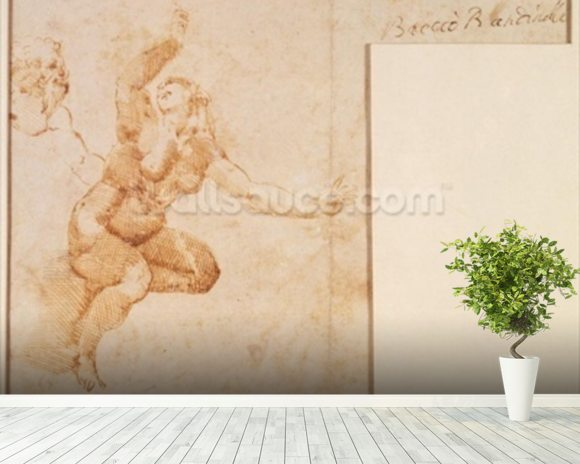 Study of a Female Nude (ink on paper) wallpaper mural room setting