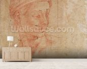 Study of a Head (red chalk on paper) wall mural living room preview