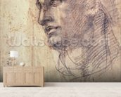 Study of a Head (charcoal on paper) mural wallpaper living room preview