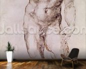 Sketch of David with his Sling, 1503-4 (pen & ink on paper) wallpaper mural kitchen preview