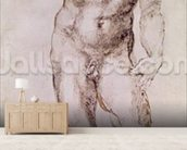 Sketch of David with his Sling, 1503-4 (pen & ink on paper) wallpaper mural living room preview