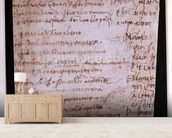 W.30v Fragment of a page of written notes (ink on paper) wall mural living room preview