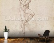 W.53r The Risen Christ, study for the fresco of The Last Judgement in the Sistine Chapel, Vatican (pencil) mural wallpaper kitchen preview