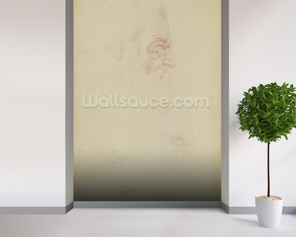 Sketch of a male head and two legs (charcoal on paper) mural wallpaper room setting