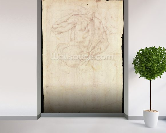 Drawing of a male standing figure (chalk on paper) mural wallpaper room setting