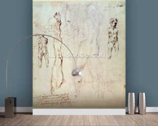 Anatomical drawings with accompanying notes (red chalk) wallpaper mural
