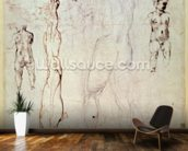 Anatomical drawings with accompanying notes (red chalk) wallpaper mural kitchen preview