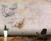 W.60 Sketch of a male head, in two positions (pencil on paper) wall mural kitchen preview
