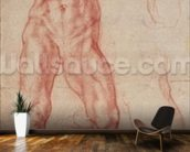 W.13r Study of a male nude, stretching upwards (chalk on paper) mural wallpaper kitchen preview