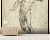 Study for The Last Judgement (W.54 recto) (pencil on paper) wallpaper mural living room preview