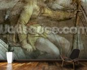 Sistine Chapel Ceiling: One of the Ancestors of God mural wallpaper kitchen preview
