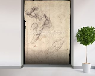 Male figure study (pencil on paper) wallpaper mural