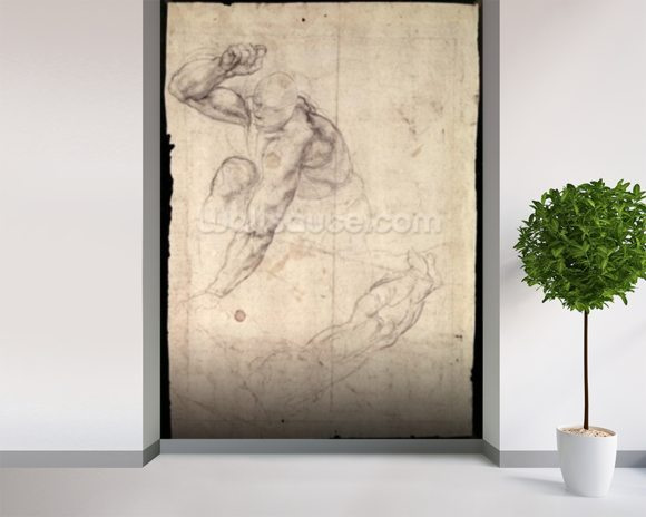 Male figure study (pencil on paper) wallpaper mural room setting