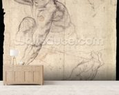 Male figure study (pencil on paper) wallpaper mural living room preview