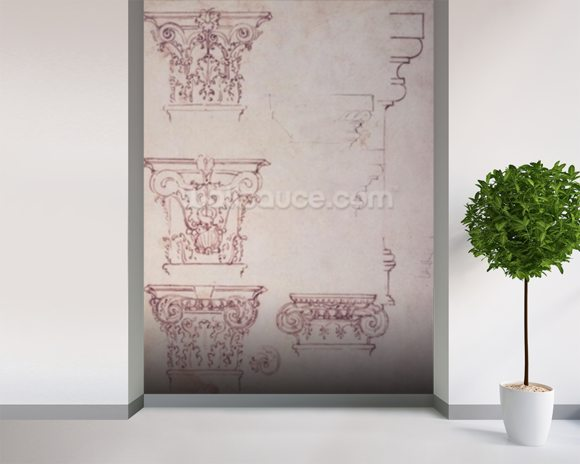 Studies for a Capital (brown ink) mural wallpaper room setting