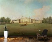Badminton House, Gloucestershire wallpaper mural kitchen preview