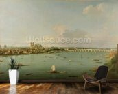 View of the Thames from South of the River mural wallpaper kitchen preview