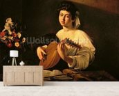 The Lute Player, c.1595 (oil on canvas) wallpaper mural living room preview