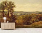 Dedham Vale, c.1802 (oil on canvas) wall mural living room preview