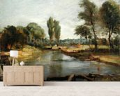 Flatford Lock, 1810-11 (oil on paper on canvas) wall mural living room preview