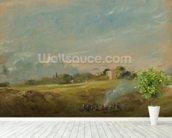 A View of Hampstead Heath, with figures round a bonfire (oil on canvas) wallpaper mural in-room view