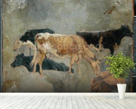 Study of Five Horned Cattle (verso) (oil on millboard) wallpaper mural room setting