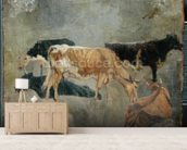 Study of Five Horned Cattle (verso) (oil on millboard) wallpaper mural living room preview