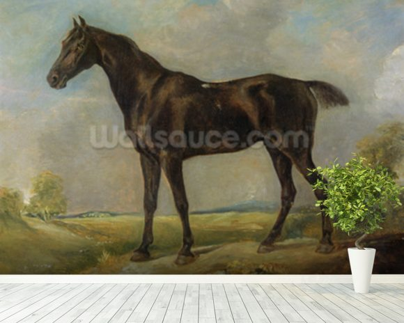 Golding Constables Black Riding-Horse, c.1805-10 (oil on panel) wall mural room setting