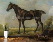 Golding Constables Black Riding-Horse, c.1805-10 (oil on panel) wall mural kitchen preview