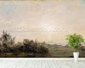 Hampstead Heath, looking towards Harrow, 1821-22 (oil on paper laid on canvas) mural wallpaper in-room view