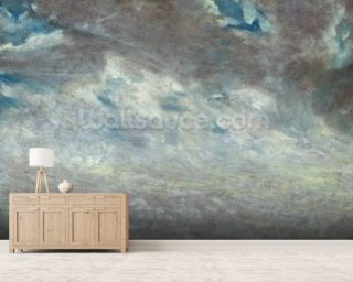 Cloud Study, 1821 (oil on paper on board) mural wallpaper