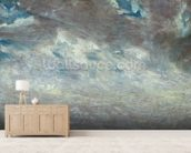 Cloud Study, 1821 (oil on paper on board) mural wallpaper living room preview